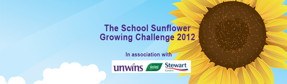 Sunflower Challenge