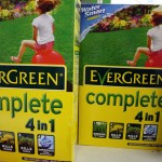 Evergreen complete 4 in 1 medium size box