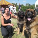 Companion Dog Show At Bellis Brothers 2011 3