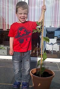 holt-bean-planting-3-2013