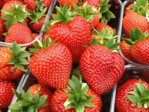 Strawberry punnets