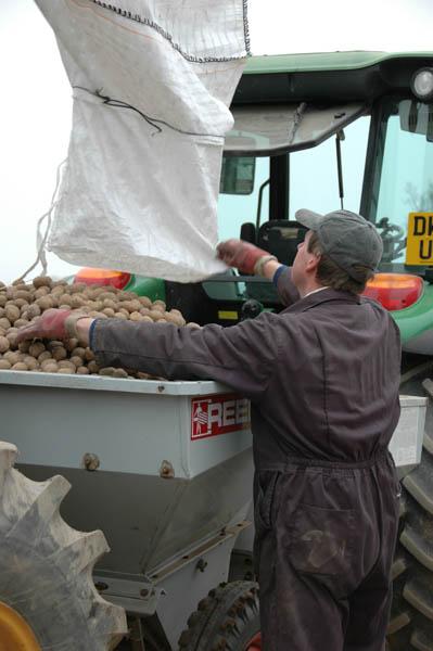 April - loading the potatoes