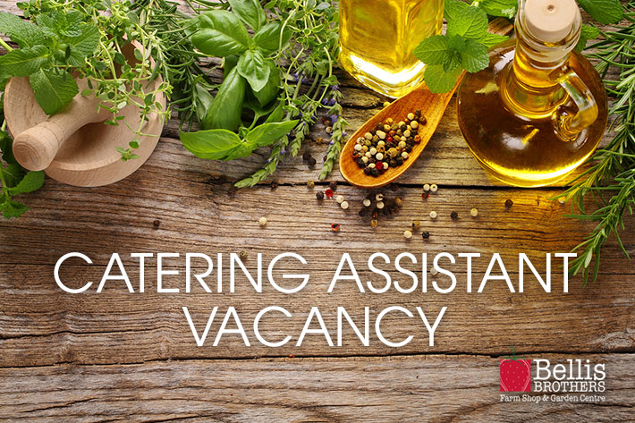 Catering Assistant required