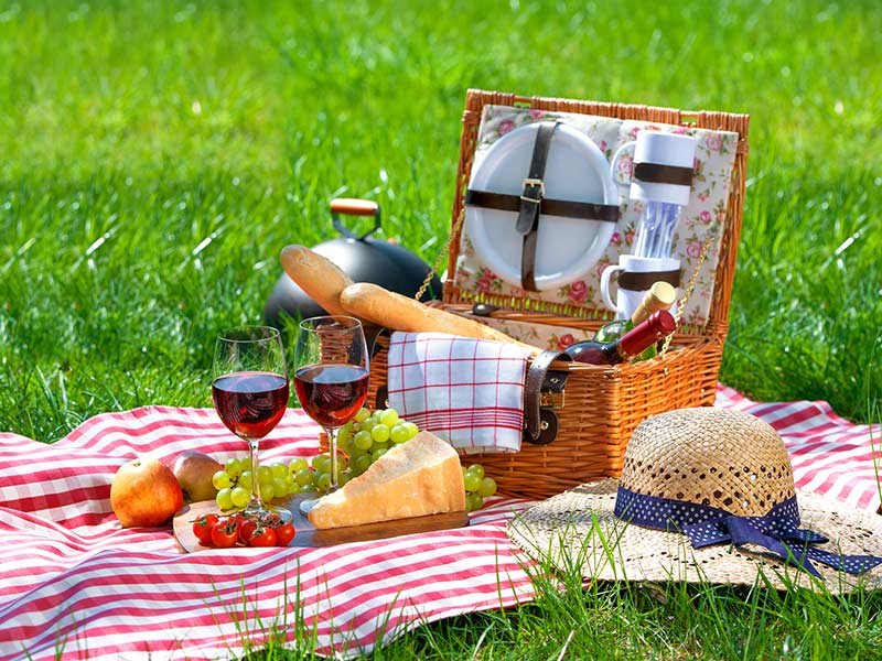 Picnic and Proms